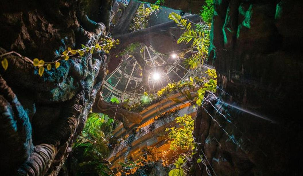 Haunted Rainforest at The Green Planet @ Dubai, Book