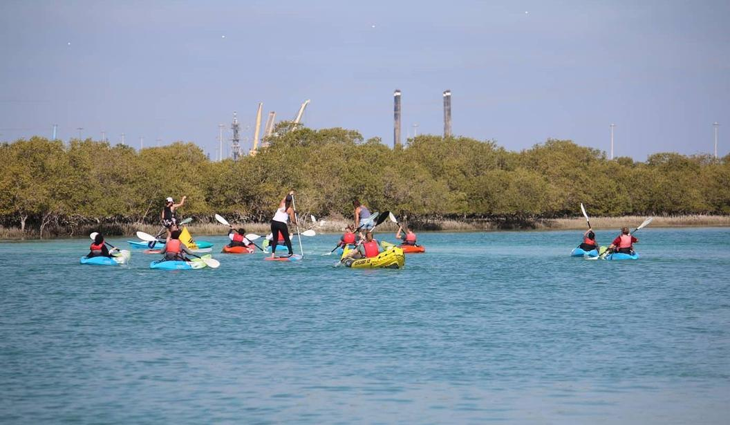 Stand Up Paddle Tour in the Mangroves @ Abu Dhabi, Book