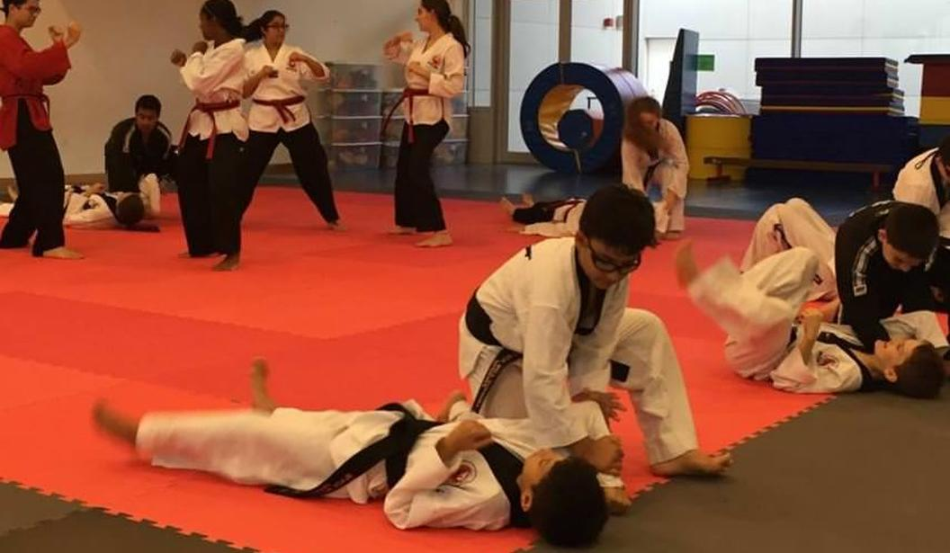 Tae Kwon Do Purple Belt 11-16yrs @ Dubai