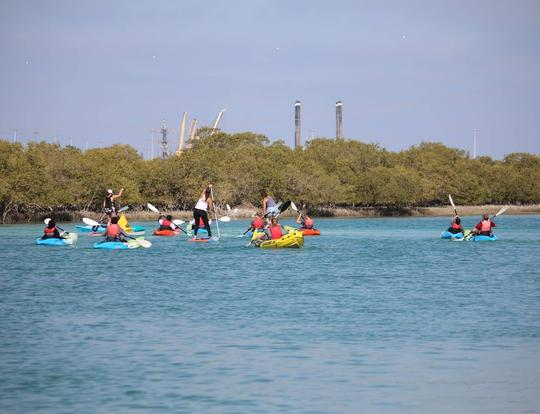 Stand Up Paddle Tour in the Mangroves @ Abu Dhabi