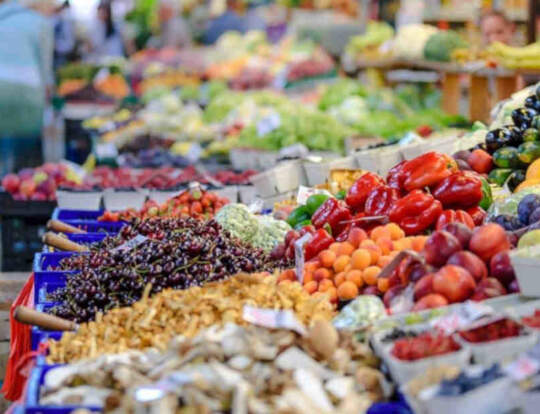 Al Aweer Central Fruit & Vegetable Market @ Dubai