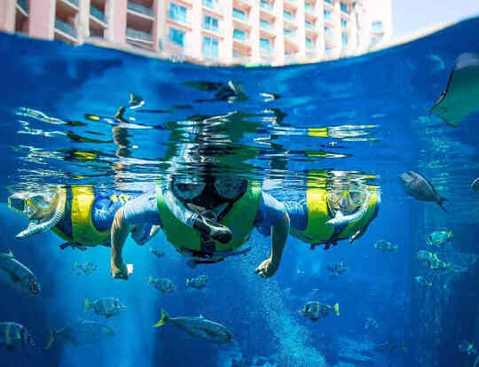 Ultimate Snorkel at Ambassador Lagoon Atlantis @ Dubai