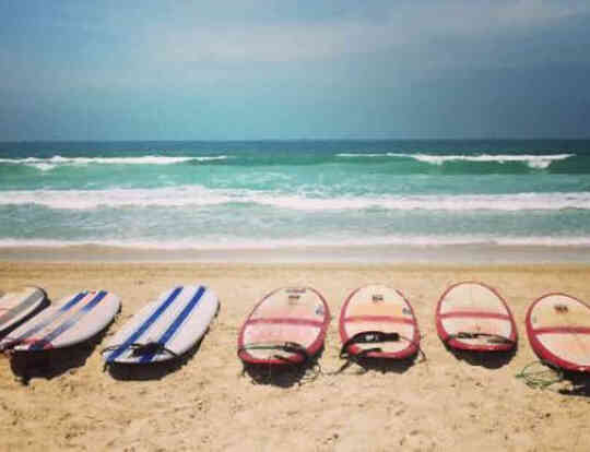 SUP Tours and Wind SUP by Surf School Arabia @ Dubai