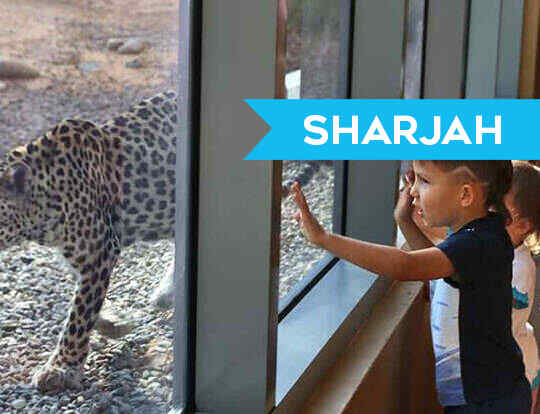 Arabia's Wildlife Centre @ Sharjah