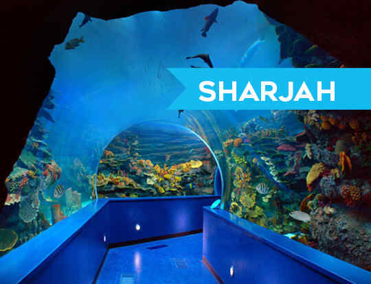 Sharjah Aquarium @ Sharjah