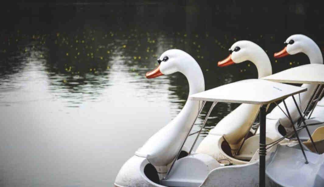 Go Boating @ Al Barsha Pond Park @ Dubai